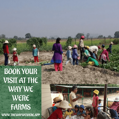 Farm Single Day Visits & Volunteering Long Stays Booking Packages